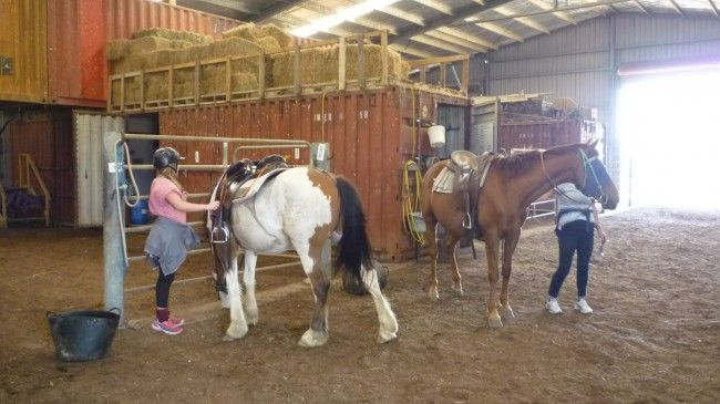 Horse riding with Aussie Farmstay and Bush Adventures at Centennial Glen Stables in the Kanimbla Valley of the Blue Mountains
