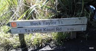 Buck Taylor Loop Track - Karekare