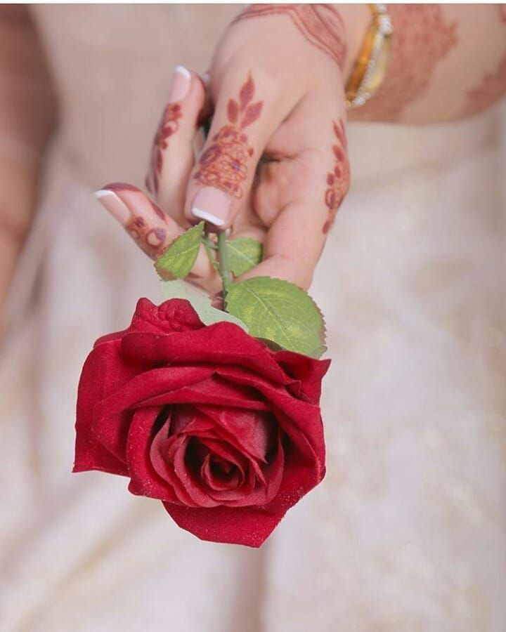 Follow For More Jjameel456 Hand Photography Flowers For You Rose Gift