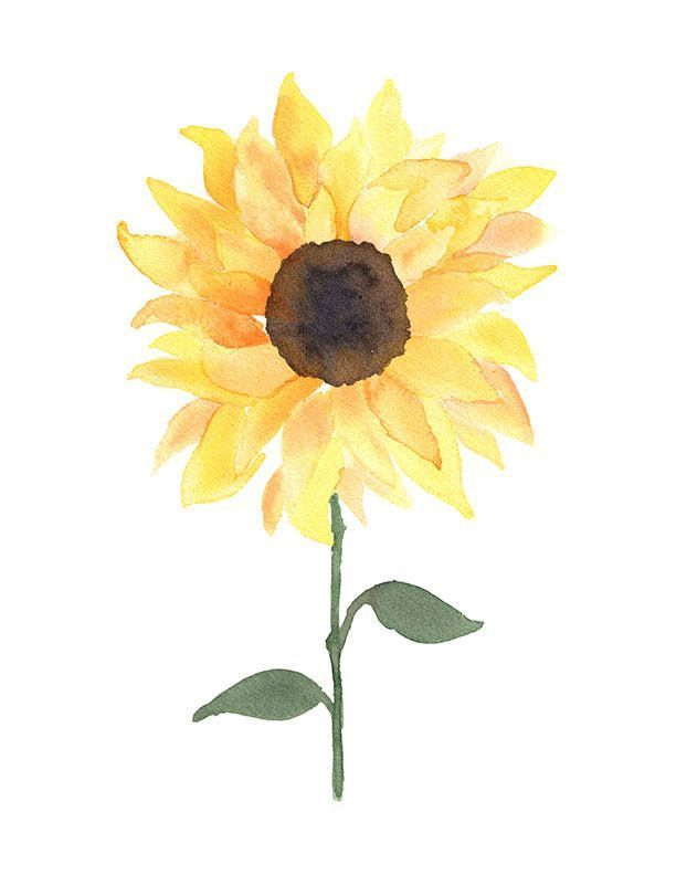 Aquarell Sonnenblume Digitaler Download Etsy Watercolorarts