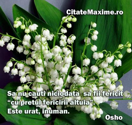 """""""Sa nu cauti niciodata sa fii fericit cu """"pretul fericirii altuia"""". Este urat, inuman."""" #CitatImagine de Osho Iti place acest #citat? ♥Distribuie♥ mai departe catre prietenii tai. #CitateImagini: #Tradare #Osho #romania #quotes Vezi mai multe #citate pe http://citatemaxime.ro/"""