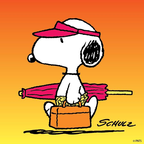 Snoopy in a day at the beach