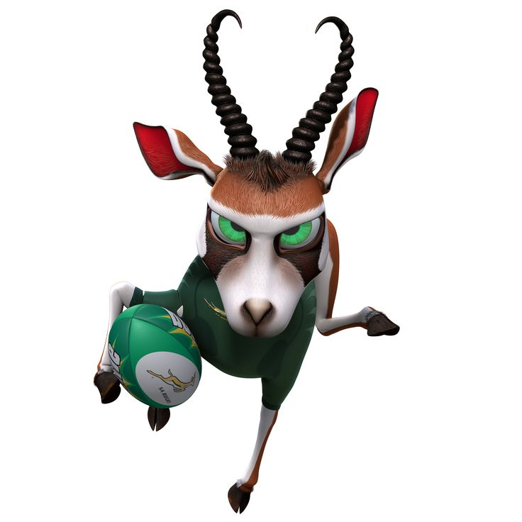 springbok rugby clipart - Google Search