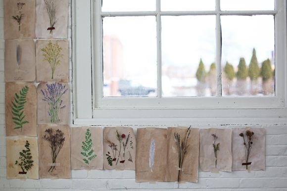 Homemade Botanical Wallpaper