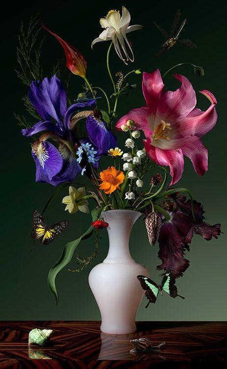 Bas Meeuws, 'Untitled' (#89), 2013. C-Print on Dibond behind acrylic © Bas Meeuws
