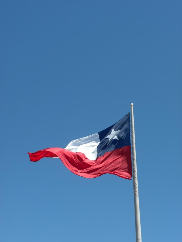 The Chilean flag. Photo Sandy Schmidt