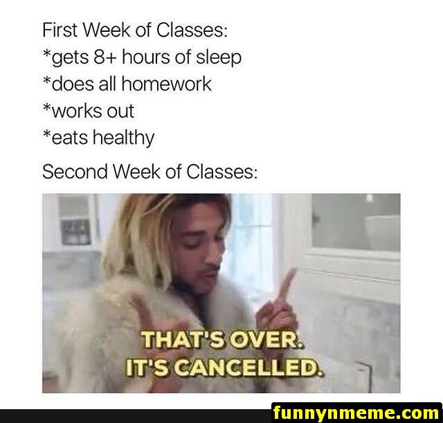 62 Funny Memes Funnymemes Funnypictures Humor Funnytexts Funnyquotes Funnyanimals Funny Lol Haha Freshman Memes College Memes Funny Relatable Memes