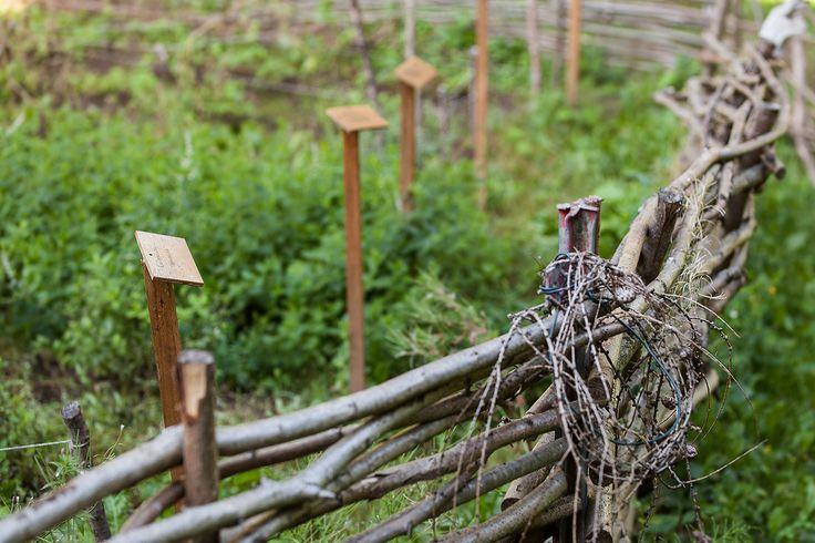 Il passato di questi luoghi si legge ancor oggi nella natura ospitale nei boschi attorno ai laghi di Piazze e Serraia, nella natura selvaggia dell'alta valle pinetana e nei segni antichi, a volte visibili e a volte impercettibili, di una storia che la gente mostra ancora a chi arriva quassù per la prima volta. Questi sono solo alcuni dei motivi per visitare l'Altopiano di Pinè, venite a scoprire tutti gli altri insieme a noi... http://www.jonas.it/vacanza_montagna_bimbi_1297.html