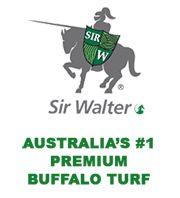 Sir Walter Buffalo Turf - J & B Buffalo Turf Supplies- http://www.buffaloturf.com.au.