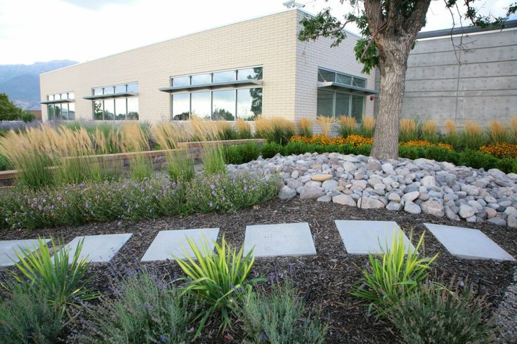18 best landscaping rills ponds images on pinterest for Drought resistant grass crossword clue