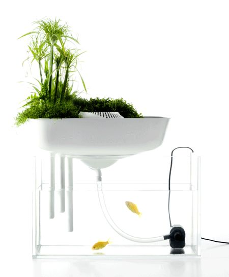 Floating Garden by Benjamin Graindorge and Duende Studio is a aquaponic biofilter for nano fish aquariums.
