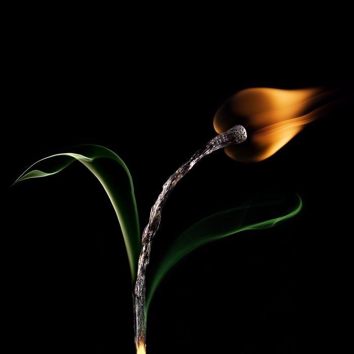 fire: Stanislav Aristov, Photos, Burnt Matchstick, Half Tergejst, Art, Flower, Photography, Gif, Fire