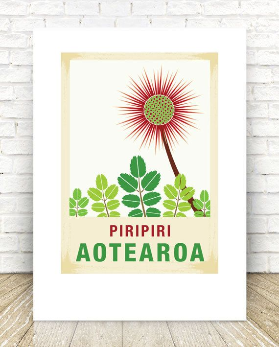 Piripiri illustration. A3 print – New Zealand native flower series. Perfect gift for any occasion. Reproduced digitally on Mohawk Felt 260GSM
