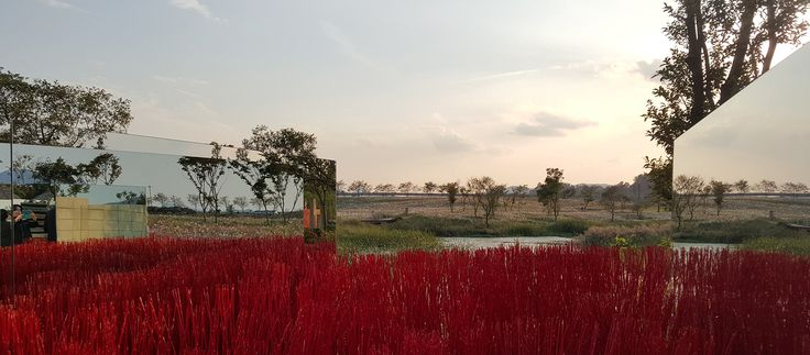 Red Waves, Suncheon Bay Garden Festival 2015 / Designed by Studio101