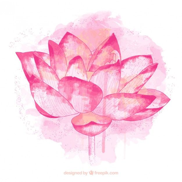 flor de loto pintada a mano
