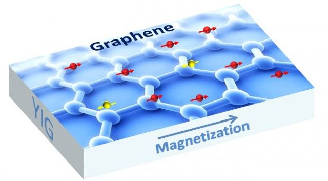 Researchers make graphene magnetic, clearing the way for faster everything - Scientists from the University of California, Riverside have successfully created graphene that has magnetic properties.   ExtremeTech