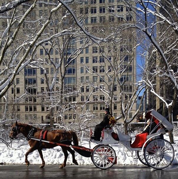 Christmas in Chicago Bueno calezas en todos los lugares de turismo, ¿cómo las trataran allá?