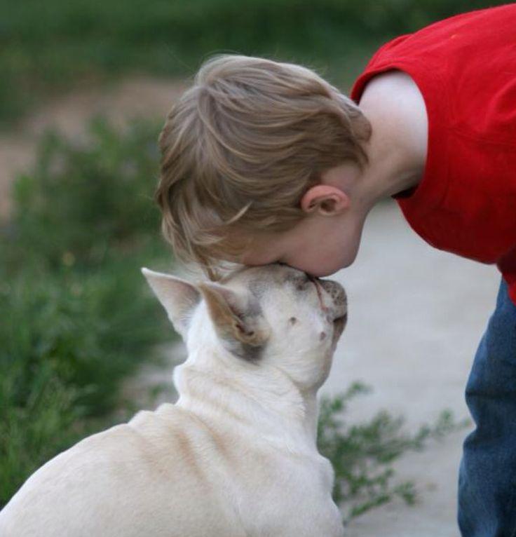French Bulldog Puppy kisses❤️