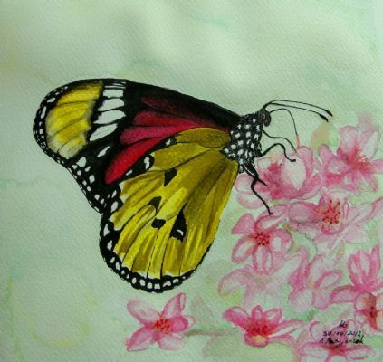 See the all of the entries to the Painters-Online and Leisure Painter Butterfly Painting Competition