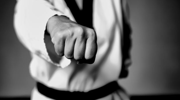 Taekwondo Fight Fighter