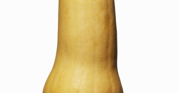 Cómo saber si una calabaza está en mal estado. La calabaza pertenece a la familia de vegetales de cáscara dura que está relacionada con los pepinos y el zapallo. Se divide en dos categorías: de verano y de invierno. Entre las variedades de la calabaza de verano se encuentran el calabacín y la calabaza amarilla, mientras que la calabaza cidra es una de las variedades de invierno que más se ...