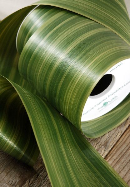 Nature inspired Aspidistra Floral Ribbon in Green Eliator. Wrap this around the outside (or inside) of a plain glass cylinder vase to add color and texture. #centerpieceideas