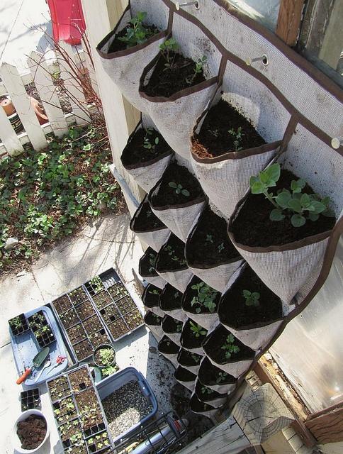 My garden is going to be interesting one day...    Google Image Result for http://24.media.tumblr.com/tumblr_m1vqhnHMMC1qinaiuo1_500.jpg