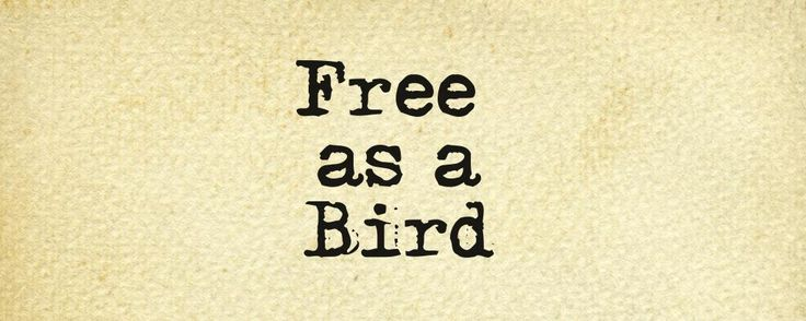 I Am Free Bird I'am free as a bird on...