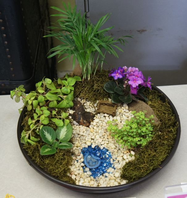 78 best images about projekty do wypr bowania on pinterest gardens succulent rock garden and - Dish garden containers ...