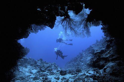 deep sea exploring