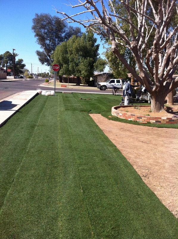 Landscaping With Bermuda Grass : Best images about lawn and garden on