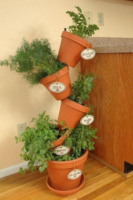 1000 ideas about indoor herb planters on pinterest herb for Patio herb garden designs containers