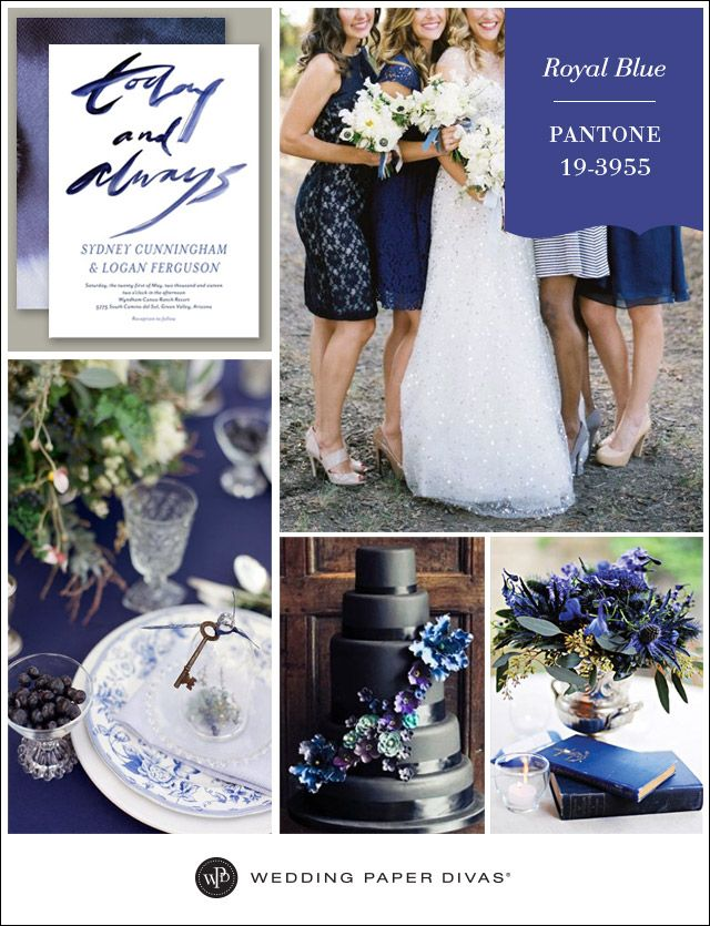 Whether you opt for classic and luxurious, or modern and artistic, use Pantone Royal Blue throughout your wedding to make a stunning impact.