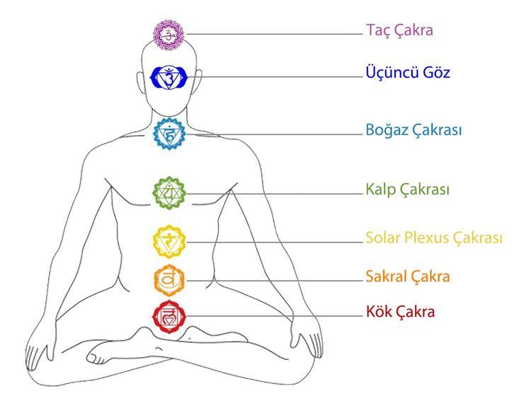 Çakralar hem hayat enerjisinin giriş kapısıdır, hem de fizik bedeni zarar görebileceği yüksek frekanslardan korumaktadır.  Prana dediğimiz hayat enerjisi çakralardan giriş yapar. En dış katmandaki çakralar aldıkları enerjinin frekansını biraz düşürüp bir alt katmandaki çakralara iletir. O katmandaki çakralar da aldığı enerjinin frekansını düşürüp bir alt katmana iletir. Bu böyle devam ederek, hayat enerjisi fizik bedene iletilir. Bu şekilde, hayat enerjisinin titreşimleri fizik bedenin…
