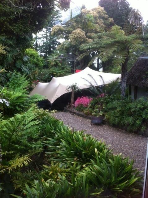 Lovely little covered bush setting