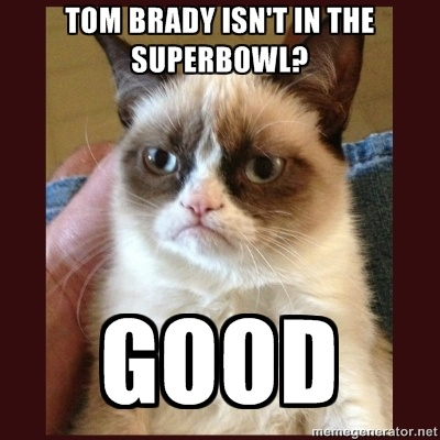 Grumpy Cat and Tom Brady. I'm a little late here but idc, I love grumpy cat and hate Tom brady