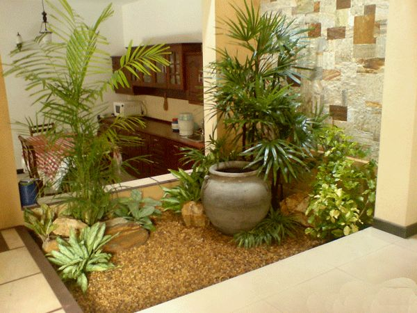 19 Vibrant Small Indoor Gardens You Can Get Inspired From - Top ...