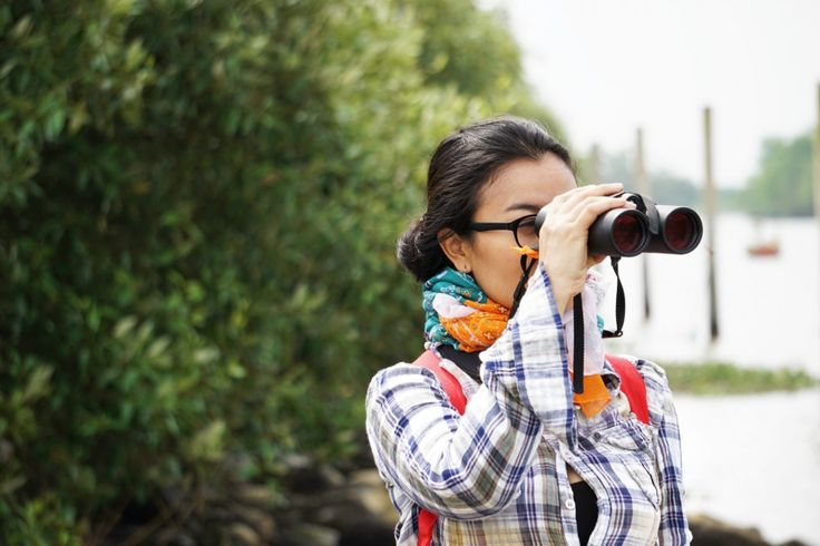 Birdwatching, Mengamati Burung di Alam Bebas