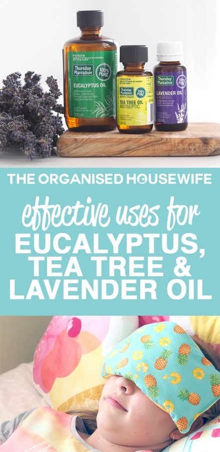 Effective uses for Eucalyptus, Tea Tree and Lavender Oil https://theorganisedhousewife.com.au/organising/general/effective-uses-for-eucalyptus-tea-tree-and-lavender-oil/?utm_campaign=coschedule&utm_source=pinterest&utm_medium=The%20Organised%20Housewife&utm_content=Effective%20uses%20for%20Eucalyptus%2C%20Tea%20Tree%20and%20Lavender%20Oil I've put together my little list of therapeutic uses for Eucalyptus, Tea Tree and Lavender Oil in the home.  There are endless uses, the list could go on…