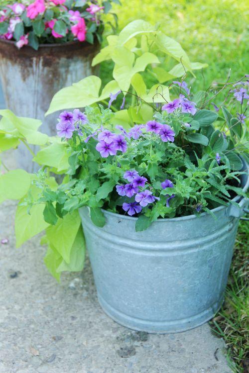Kukka-asetelma ämpäriin