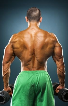 How To Build Back Muscle Size: 8 Tips For An Impressive Back | Muscle & Strength