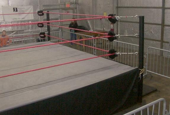 To own a Professional Wrestling ring!
