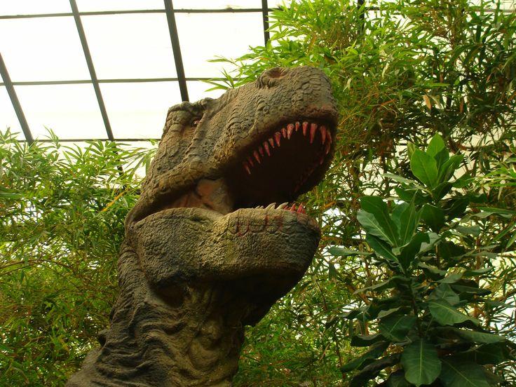 Innovative City dinosaur park, Bangalore , India. (With