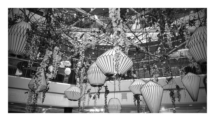 Decorations in a local furniture store #photography #blackandwhitephotography