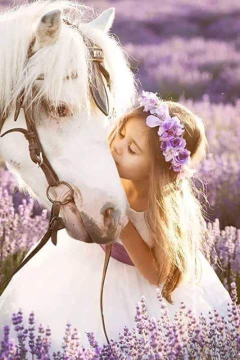 Perfect Horse Pic Little Girl In Purple Flowers Kissing -5884