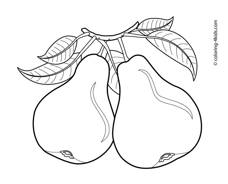 Pears fruits coloring pages for kids, printable free