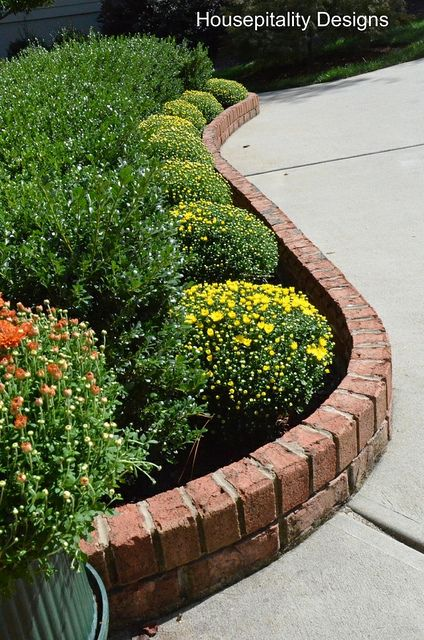 Curved brick border...so much more appealing than straight.  Nature doesn't follow a straight line.