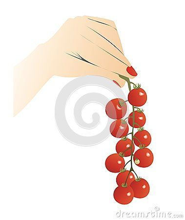 #hand holding a #cherry #truss #tomatoes
