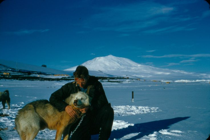 "Alun Breese with Husky dog ""Porridge."" Mount Erebus in the background. Taken by Alun Breese whilst serving on RNZAF Antarctic Flight, Tran-Antarctic Expedition, October '57 - Feb '58. From the collection of the Air Force Museum of New Zealand."