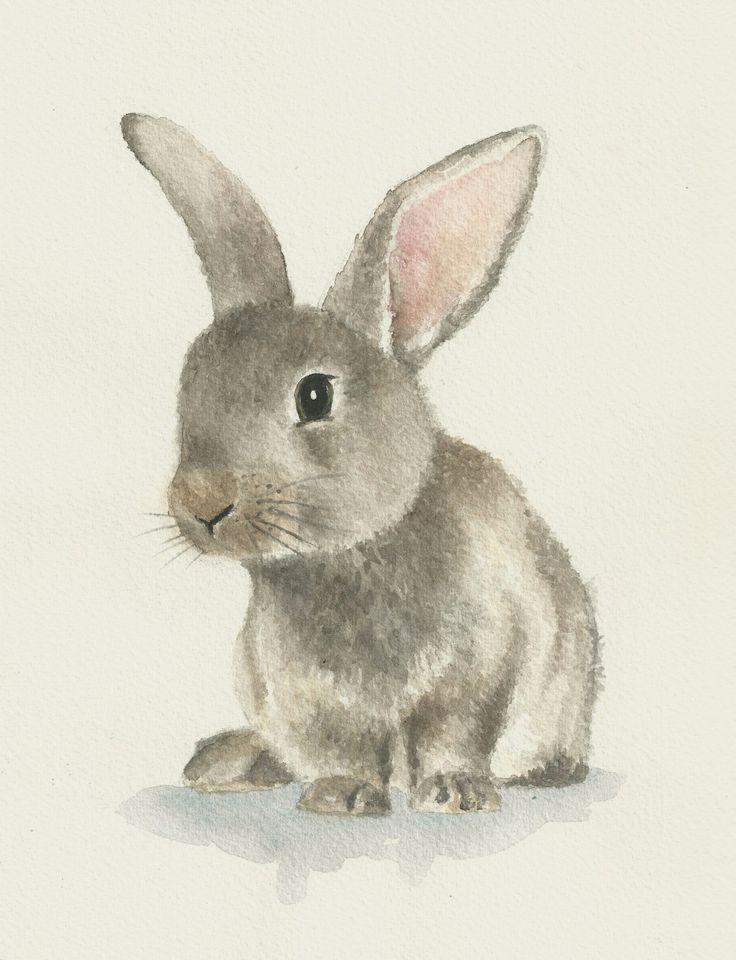 Rabbit watercolor, original bunny painting di Ddrawings su Etsy